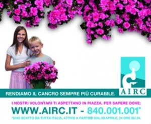 Airc-azalea