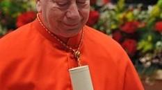 Il cardinale Francesco Coccopalmerio