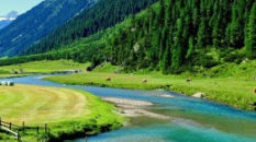 L'Anno Internazionale del Turismo Sostenibile: Montagna & Dintorni