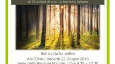 Seminario sul nuovo Codice Forestale nazionale ad Ancona il 22 giugno